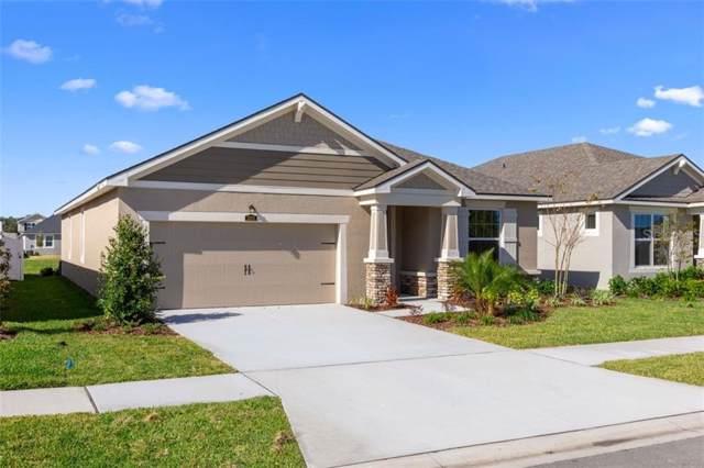 13024 Satin Lily Drive 117E, Riverview, FL 33579 (MLS #T3211957) :: Pepine Realty