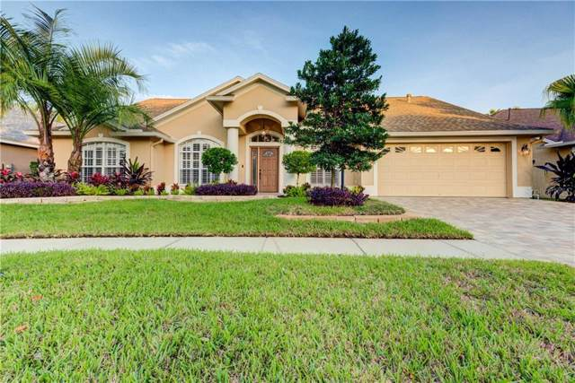 12417 Seabrook Drive, Tampa, FL 33626 (MLS #T3212854) :: The Duncan Duo Team
