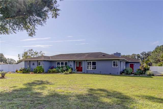 6404 Brahman Drive, Lakeland, FL 33810 (MLS #T3212957) :: Griffin Group