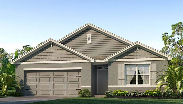 31024 Summer Sun Loop, Wesley Chapel, FL 33545 (MLS #T3213183) :: The Duncan Duo Team