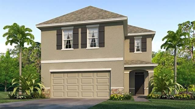 10483 Penny Gale Loop, San Antonio, FL 33576 (MLS #T3213983) :: The Robertson Real Estate Group