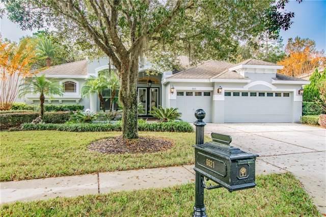 6621 Thornton Palms Drive, Tampa, FL 33647 (MLS #T3214690) :: Andrew Cherry & Company