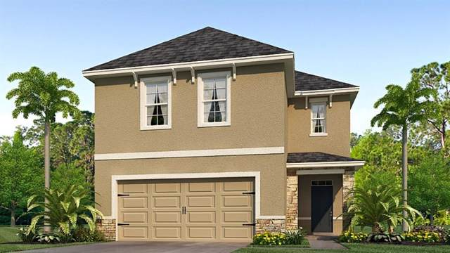 5816 Calla Lilly Drive, Sarasota, FL 34232 (MLS #T3215900) :: Armel Real Estate
