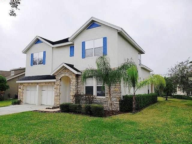14642 Chatsworth Manor Circle, Tampa, FL 33626 (MLS #T3216019) :: The Light Team