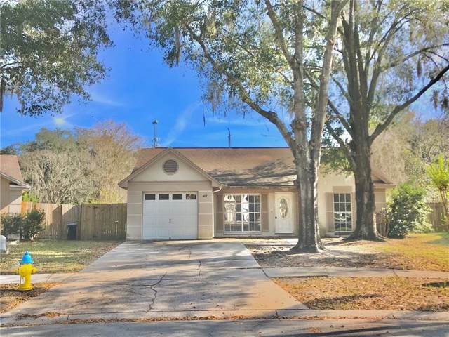 4637 Cabbage Palm Drive, Valrico, FL 33596 (MLS #T3217965) :: GO Realty