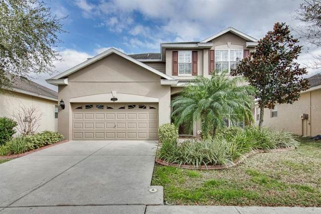 10920 Ancient Futures Drive, Tampa, FL 33647 (MLS #T3218609) :: 54 Realty