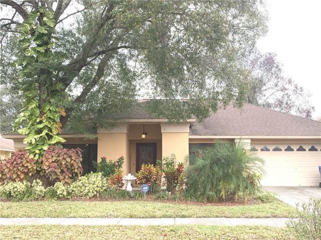 9716 Fox Chapel Road, Tampa, FL 33647 (MLS #T3218942) :: Cartwright Realty
