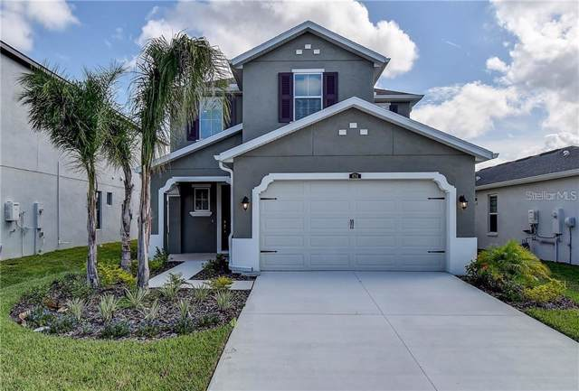 28739 Revaro Lane, Wesley Chapel, FL 33543 (MLS #T3219005) :: Armel Real Estate