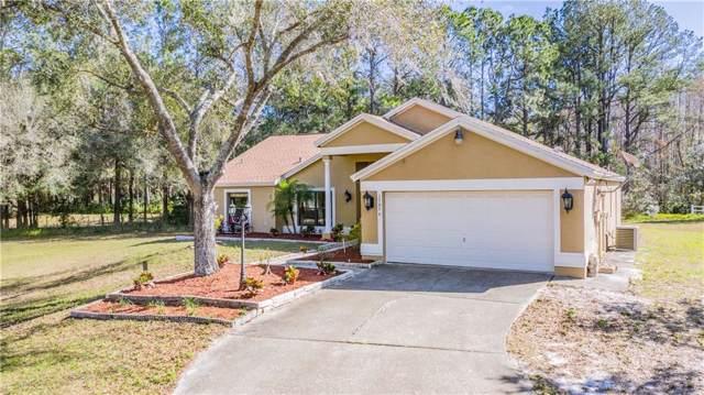 17036 Wintergreen Court, Lutz, FL 33558 (MLS #T3220946) :: Charles Rutenberg Realty