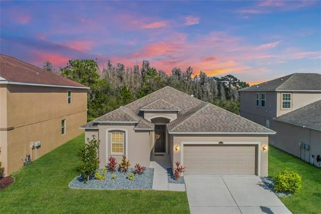 32803 Grantman Drive, Wesley Chapel, FL 33543 (MLS #T3221015) :: The Light Team