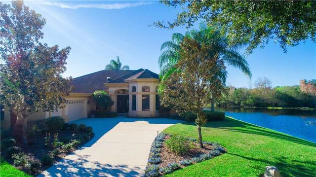 3119 Lynwood Court, Land O Lakes, FL 34638 (MLS #T3221023) :: Griffin Group