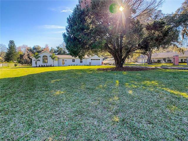 5616 Michael Lane, Tampa, FL 33625 (MLS #T3223131) :: Pristine Properties