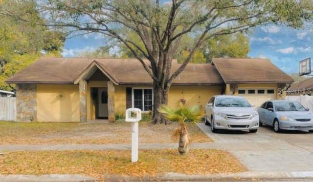 17646 Meadowbridge Drive, Lutz, FL 33549 (MLS #T3223714) :: Premium Properties Real Estate Services