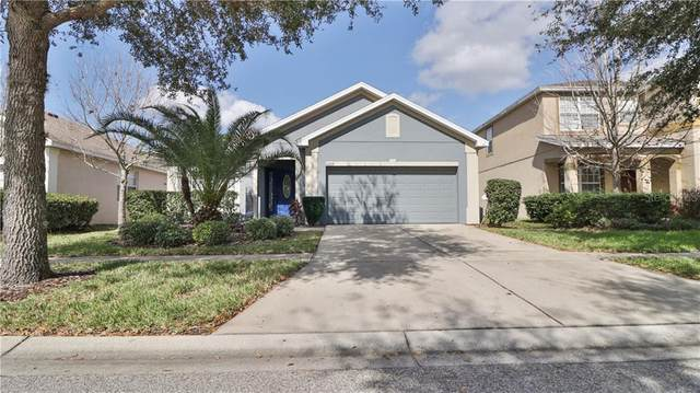 10309 Celtic Ash Drive, Ruskin, FL 33573 (MLS #T3225187) :: Griffin Group