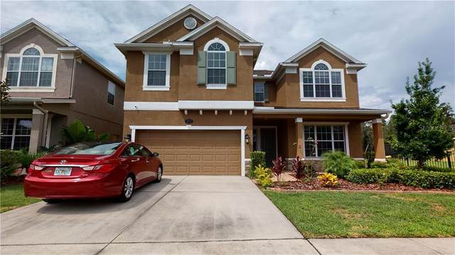19313 Water Maple Drive, Tampa, FL 33647 (MLS #T3226167) :: Team Bohannon Keller Williams, Tampa Properties