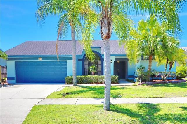 8638 Chadwick Drive, Tampa, FL 33635 (MLS #T3226569) :: Griffin Group