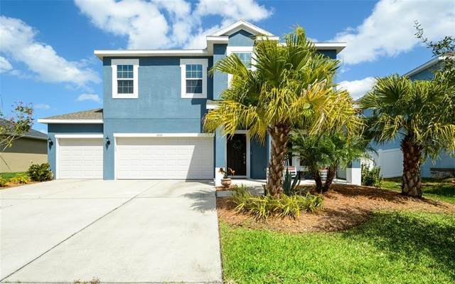 6220 Horse Mill Place, Palmetto, FL 34221 (MLS #T3227186) :: Homepride Realty Services