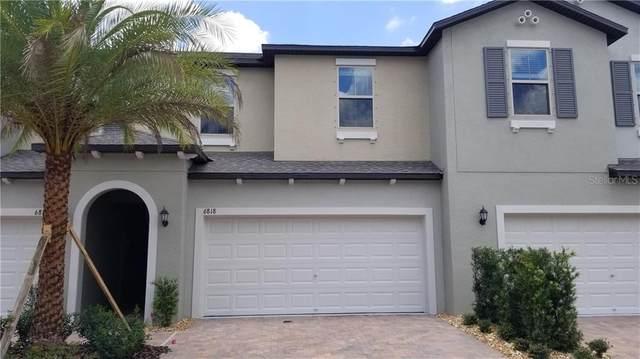 6818 Via Perloso Court, Tampa, FL 33625 (MLS #T3227236) :: Bridge Realty Group