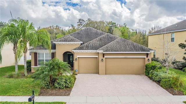 22702 Cherokee Rose Place, Land O Lakes, FL 34639 (MLS #T3228091) :: Baird Realty Group