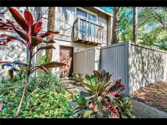 7921 Citrus Drive, Temple Terrace, FL 33637 (MLS #T3228472) :: Baird Realty Group