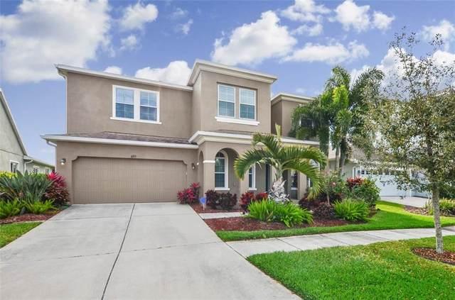 6715 Park Strand Drive, Apollo Beach, FL 33572 (MLS #T3228983) :: Team Bohannon Keller Williams, Tampa Properties