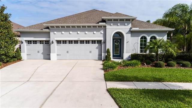 7153 Peregrina Loop, Wesley Chapel, FL 33545 (MLS #T3230289) :: Team Bohannon Keller Williams, Tampa Properties