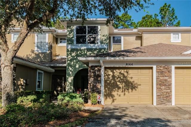 8166 Stone View Drive, Tampa, FL 33647 (MLS #T3230615) :: Dalton Wade Real Estate Group