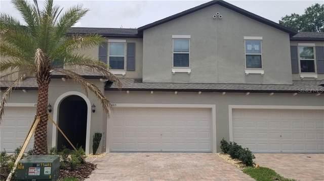6815 Via Perloso Court, Tampa, FL 33625 (MLS #T3231514) :: Bridge Realty Group