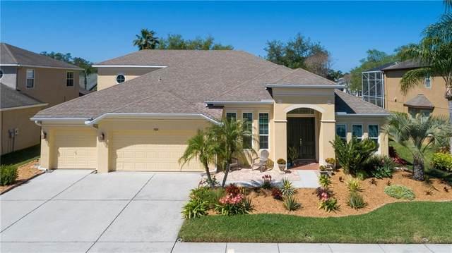 7321 Wild Oak Lane, Land O Lakes, FL 34637 (MLS #T3233014) :: Cartwright Realty