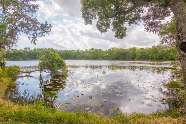 732 June Lake Lane, Brandon, FL 33510 (MLS #T3233797) :: Team Bohannon Keller Williams, Tampa Properties
