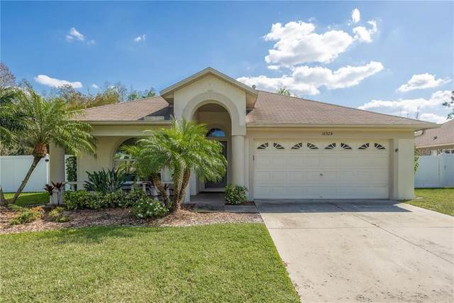 16924 Nikki Lane, Odessa, FL 33556 (MLS #T3233897) :: Premium Properties Real Estate Services