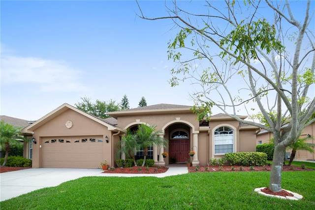 2048 Cardamon Drive, Trinity, FL 34655 (MLS #T3233939) :: Lock & Key Realty