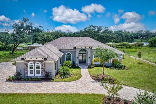 4019 Cove Lake Place, Land O Lakes, FL 34639 (MLS #T3234166) :: The Duncan Duo Team