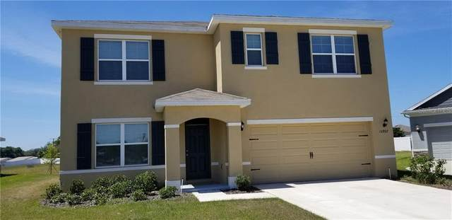 10802 Oak Ranch Heritage Place, Thonotosassa, FL 33592 (MLS #T3234206) :: Team Bohannon Keller Williams, Tampa Properties