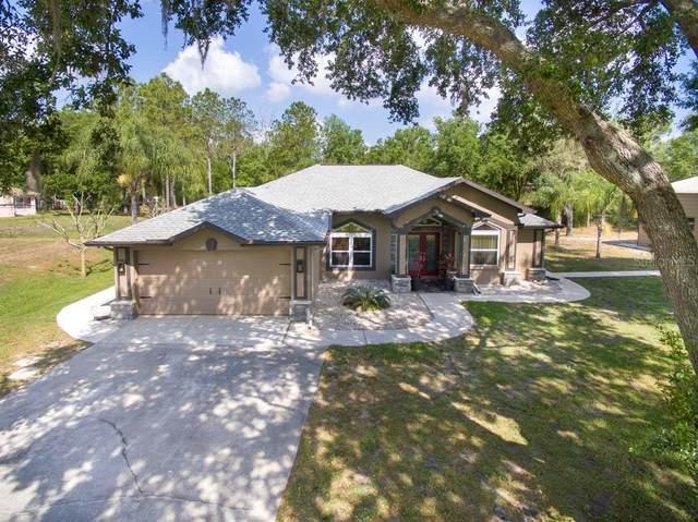 26433 Bluestripe Drive, Wesley Chapel, FL 33544 (MLS #T3234458) :: Cartwright Realty