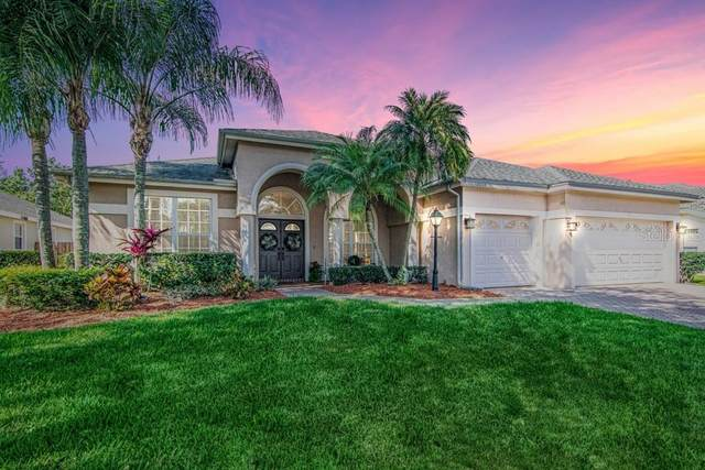 12013 Wandsworth Drive, Tampa, FL 33626 (MLS #T3234690) :: Griffin Group