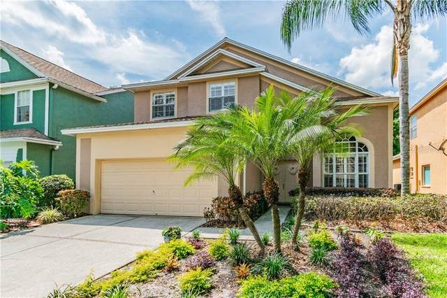 17720 Long Ridge Road, Tampa, FL 33647 (MLS #T3235283) :: Team Bohannon Keller Williams, Tampa Properties