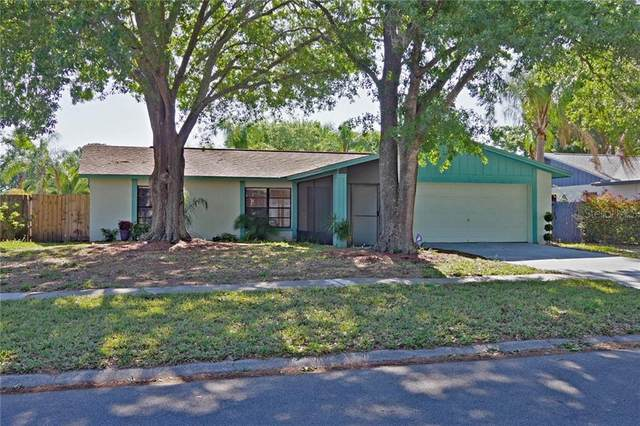 15911 Crying Wind Drive, Tampa, FL 33624 (MLS #T3235410) :: Lockhart & Walseth Team, Realtors