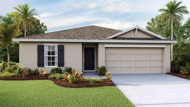 260 Hickory Course Radial, Ocala, FL 34472 (MLS #T3235751) :: Team Bohannon Keller Williams, Tampa Properties