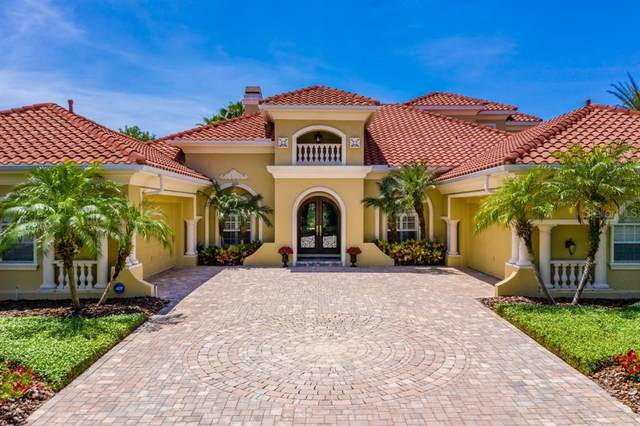 6109 Avocetridge Drive, Lithia, FL 33547 (MLS #T3237824) :: EXIT King Realty