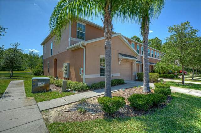 2811 Birchcreek Drive, Wesley Chapel, FL 33544 (MLS #T3242210) :: Team Bohannon Keller Williams, Tampa Properties