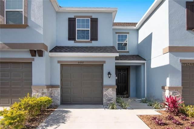6652 Rocky Park Street, Tampa, FL 33625 (MLS #T3242213) :: Cartwright Realty
