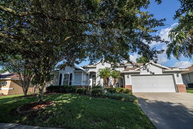 2818 Rolling Acres Place, Valrico, FL 33596 (MLS #T3243164) :: Baird Realty Group