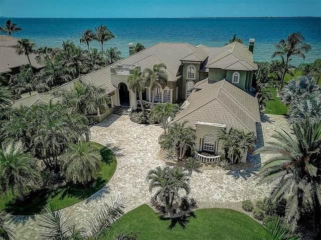6312 Marbella Boulevard, Apollo Beach, FL 33572 (MLS #T3243183) :: Your Florida House Team