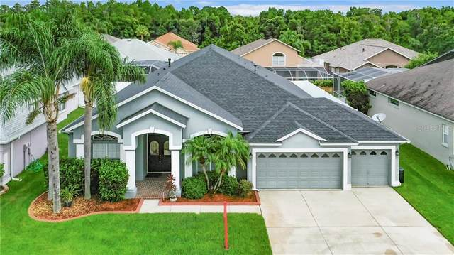 10126 Queens Park Drive, Tampa, FL 33647 (MLS #T3244410) :: Bustamante Real Estate