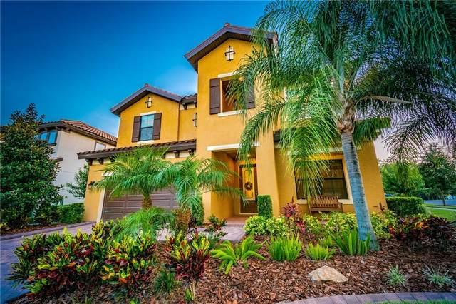 2890 Calvano Drive, Land O Lakes, FL 34639 (MLS #T3244802) :: Cartwright Realty