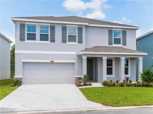 3043 Storybrook Preserve Dr., Odessa, FL 33556 (MLS #T3245571) :: Cartwright Realty