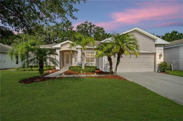 9751 Rolling Circle, San Antonio, FL 33576 (MLS #T3245735) :: Baird Realty Group
