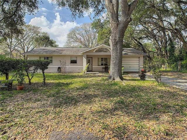 11717 Emmaus Cemetery Road, San Antonio, FL 33576 (MLS #T3245835) :: Cartwright Realty