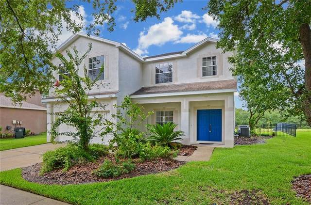 14724 Heronglen Drive, Lithia, FL 33547 (MLS #T3246857) :: The Duncan Duo Team